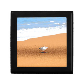 SEAGULL ON BEACH QUEENSLAND AUSTRALIA TRINKET BOXES