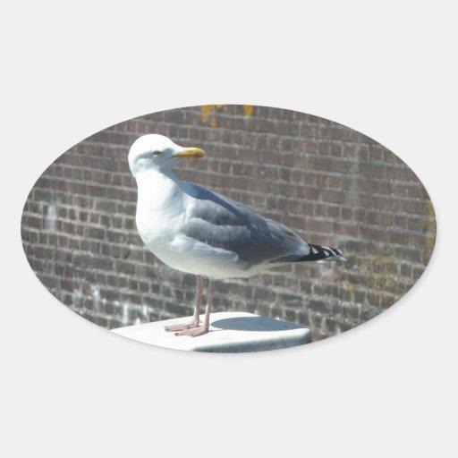 Seagull on pillar at sea oval sticker