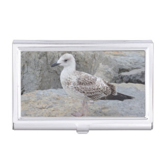 Seagull on Rocks Business Card Holder