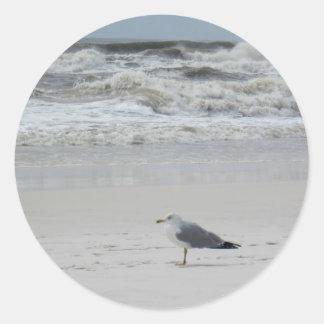 Seagull on the Beach Classic Round Sticker