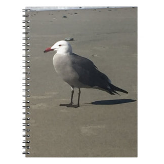 Seagull on the Beach Notebook
