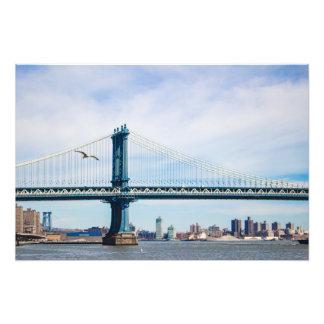 Seagull over Manhattan Bridge Photo Print