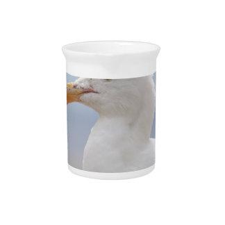 Seagull Pitcher