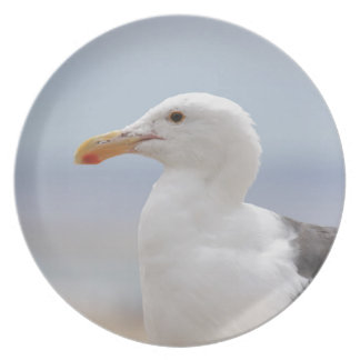 Seagull Plate