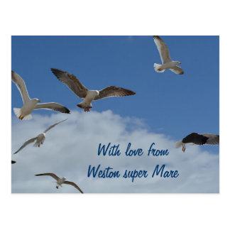 Seagull postcard - from Weston super Mare