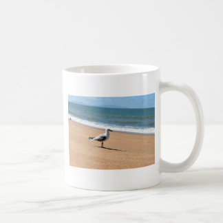 SEAGULL QUEENSLAND AUSTRALIA COFFEE MUG
