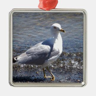 Seagull Silver-Colored Square Ornament