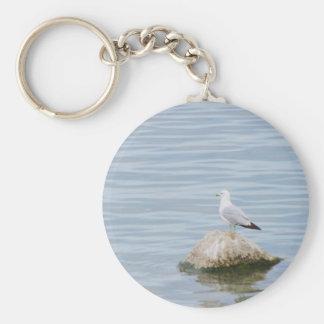Seagull sitting on a Rock Basic Round Button Keychain