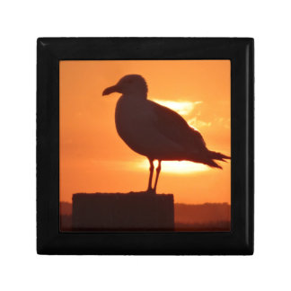 Seagull Sunset Gift Boxes