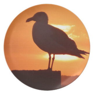 Seagull Sunset Party Plates