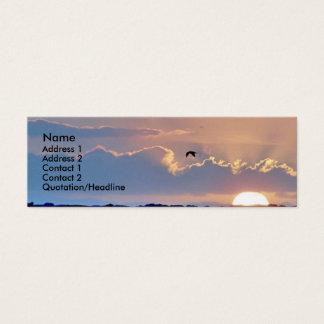 Seagull Sunset  Profile Card