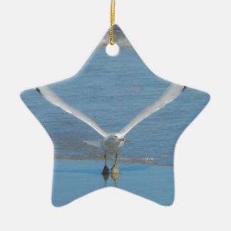 Seagull Take Off Ceramic Star Ornament