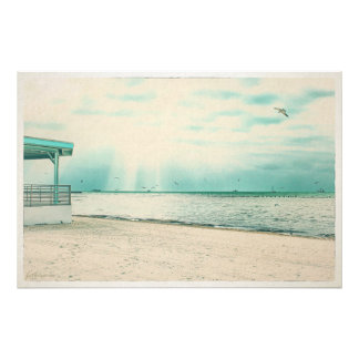 Seagulls and Gazebo at Higgs Beach Key West FL Photo Print
