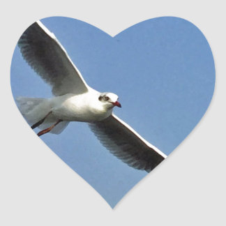 Seagulls are beautiful birds heart sticker