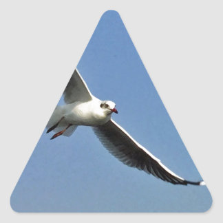 Seagulls are beautiful birds triangle sticker