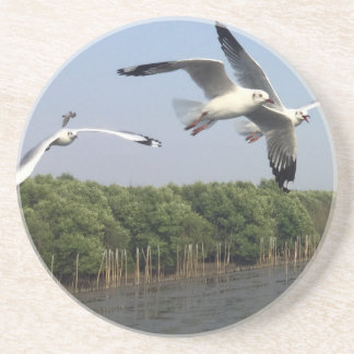 Seagulls at the beach beverage coasters