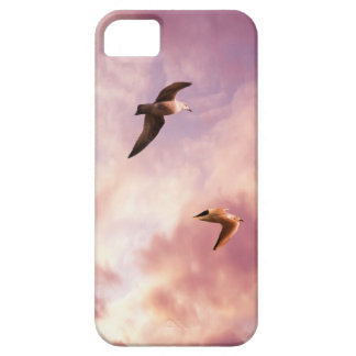 Seagulls flying in a sunset sky iPhone 5 cases