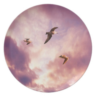 Seagulls flying in a sunset sky plate