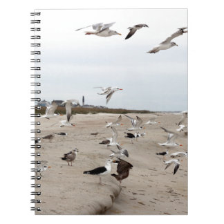 Seagulls Flying, Standing and Eating on the Beach Spiral Note Book