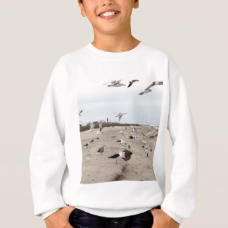 Seagulls Flying, Standing and Eating on the Beach Sweatshirt