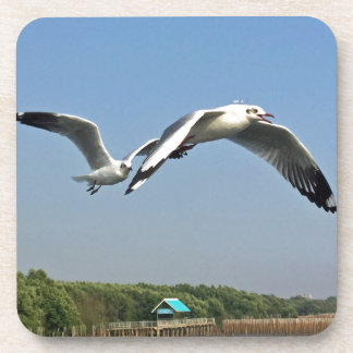 Seagulls in Flight Drink Coaster