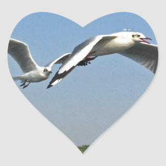 Seagulls in Flight Heart Sticker