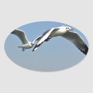 Seagulls in Flight Oval Sticker