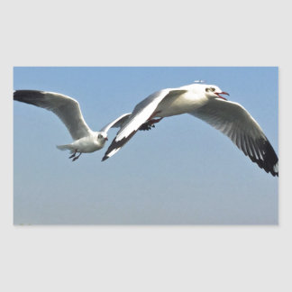 Seagulls in Flight Sticker