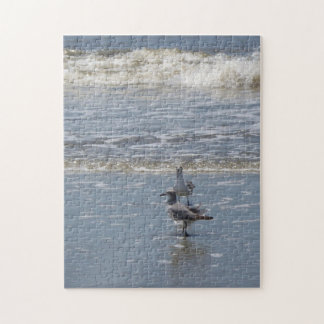 Seagulls Jigsaw Puzzle
