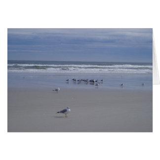 Seagulls On Parade Card