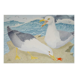 Seagulls resting on a cliff poster