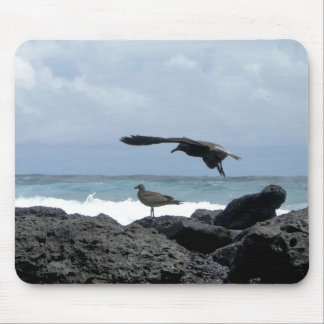 seagulls, rocks ocean and mouse pad
