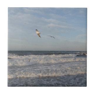 "Seagulls Small (4.25"" x 4.25"") Ceramic Photo Tile"