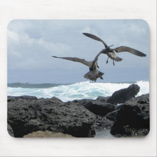 seagulls stupefies the waves mouse pad