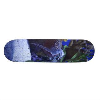 Seahorses Skateboard Decks