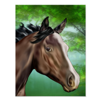 Seal Bay Thoroughbred Horse Poster