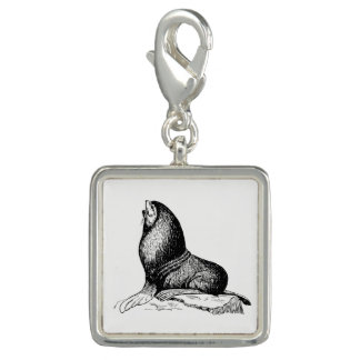 Seal Charm
