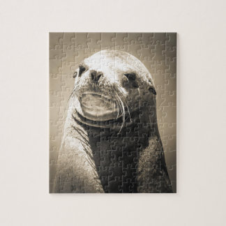 seal jigsaw puzzle