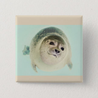 Seal of approval 2 inch square button