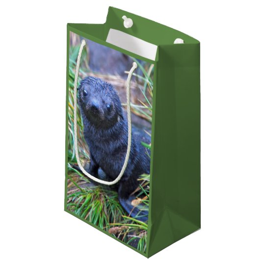 Seal Pup Gift Bag