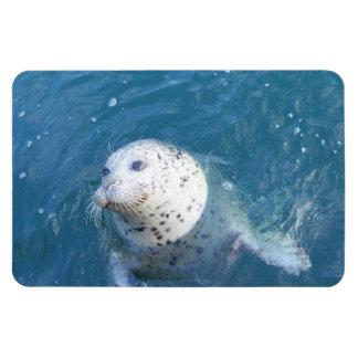 Seal Rectangular Photo Magnet