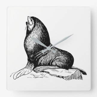 Seal Square Wall Clock