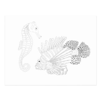 Sealife Adult Coloring Postcard