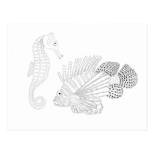 Sealife Adult Colouring Postcard