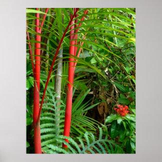 Sealing Wax Palms Poster