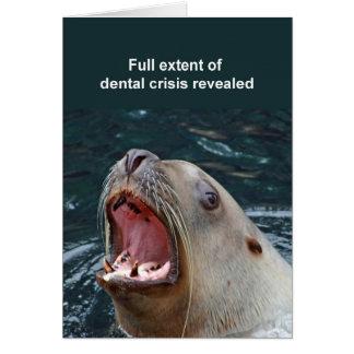 Sealion card