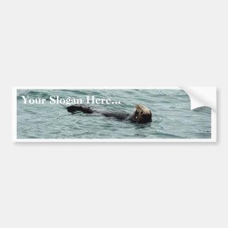Seals In Monterey Bumper Sticker