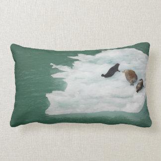 Seals on an Iceberg Pillow