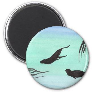 Seals Underwater Magnet