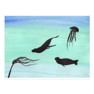 Seals Underwater Postcard